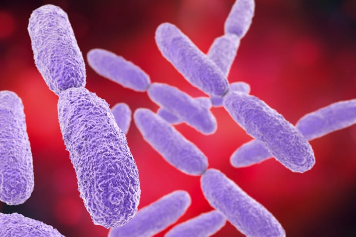 Rapid Response & Containment Strategy Key To Decreasing Spread of Superbugs